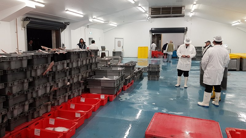 Refurbished Newlyn Harbour Fish Market